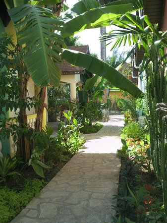 The Boardwalk Village Hotel : Lush pathway to our room