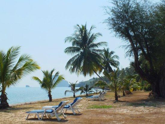 Betterview Bed Breakfast & Bungalow: Jolie vue mais attention, pas de réelle plage où se baigner !