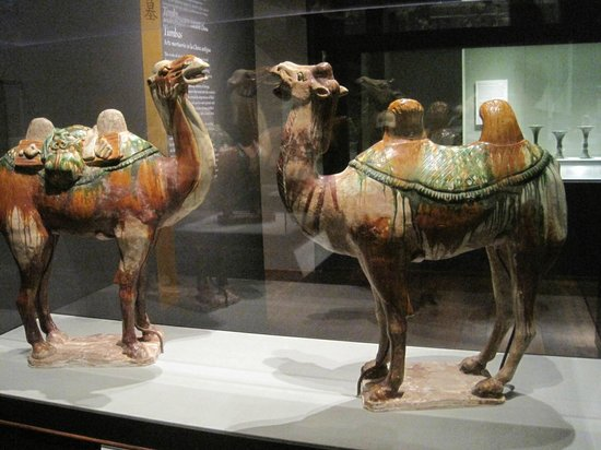 San Diego Museum of Art: MORE CAMELS