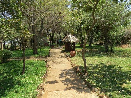 Lake Manyara Serena Lodge: Anlage