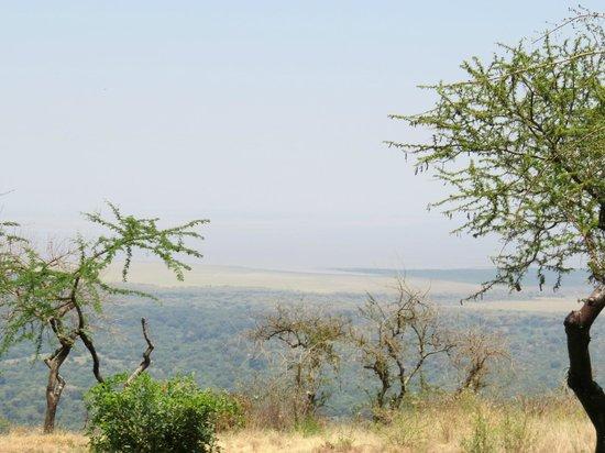 Lake Manyara Serena Lodge: Zimmeraussicht