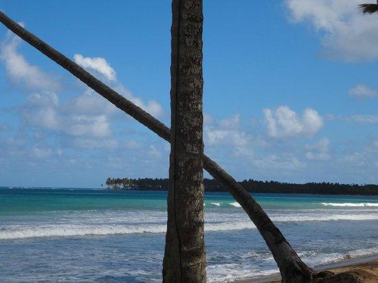 Sublime Samana: beach