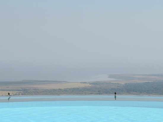 Lake Manyara Serena Lodge : Aussicht