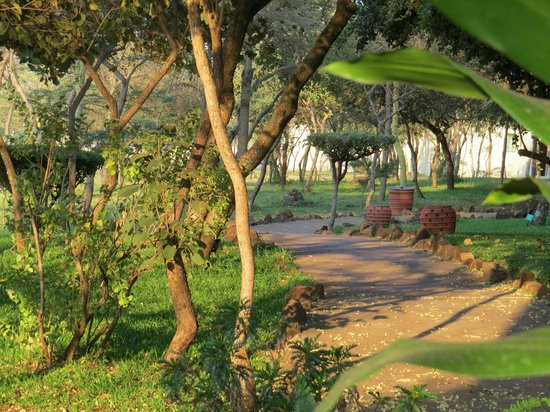 Lake Manyara Serena Lodge : Anlage