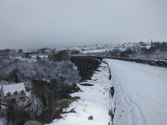 River Taff: Snow on Viaduct