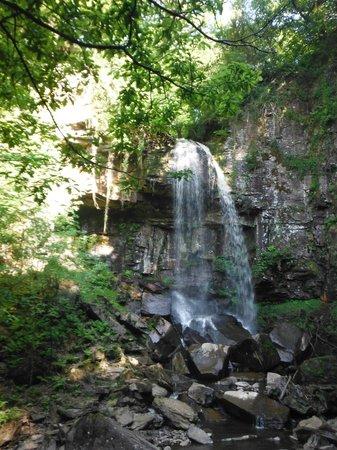 River Taff: waterfall