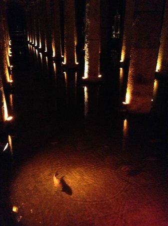 Cisterna Basilica (Versunkener Palast): 地下宮殿の大貯水池