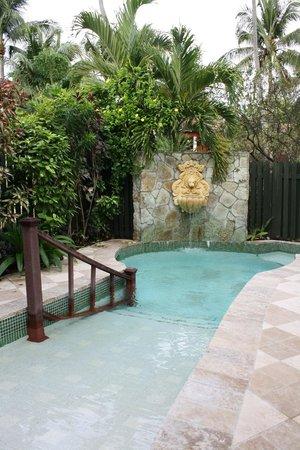 Sandals Grande Antigua Resort & Spa : Our private pool