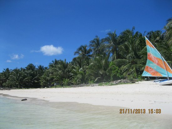 Cocoplum Beach Hotel: Foto tirada dentro do mar em frente ao hotel
