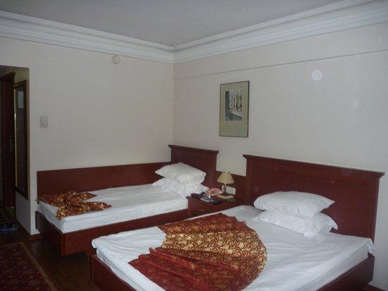 Botanik Hotel & Resort: Номер  Стандарт