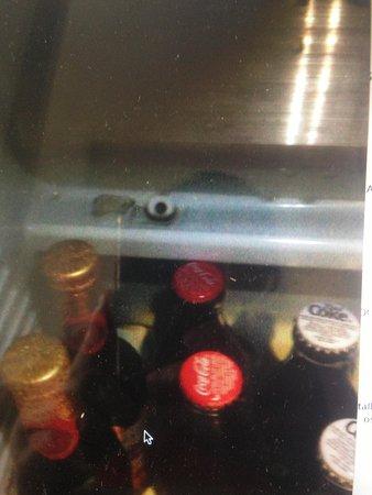 Macdonald Bath Spa Hotel: Fungus in the mini bar and a polo left