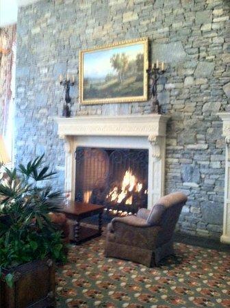 The Inn on Biltmore Estate : Fireplace in Lobby Bar