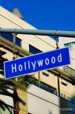 Hollywood Walk of Fame: Street sign