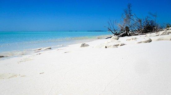 Playa Paraiso really is paradise!
