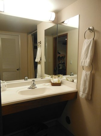 Kaanapali Beach Hotel: Bathroom