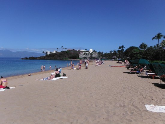Kaanapali Beach Hotel : Nicest beach in ALL of Maui