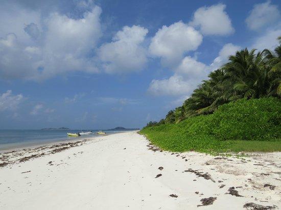Le Tropique Villa: Strand