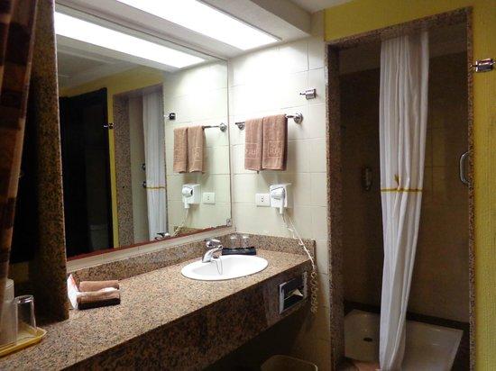 vue de la salle de bain avec grande douche, mais pas de ...