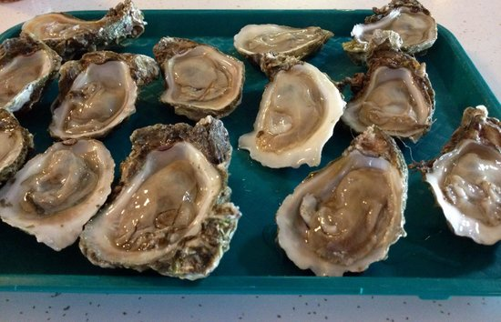 Nick's Seafood: Fresh, icy oysters on the half-shell.  They frequently run out however depending on availability