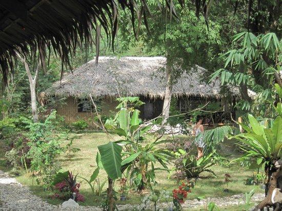 Jungle Beach Resort: JBR