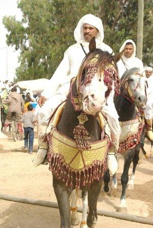 La Mamounia Marrakech : nous avons assisté à une fantasia...génial !