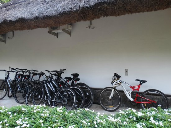 Carnoustie Ayurveda & Wellness Resort: cycles available