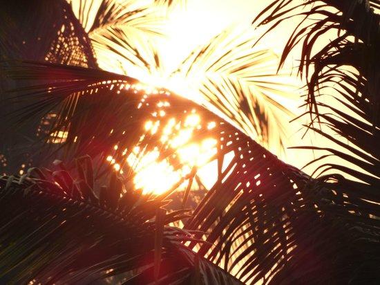 Carnoustie Ayurveda & Wellness Resort: sunrise