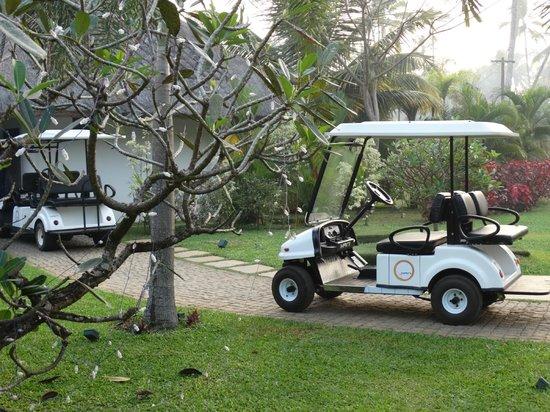 Carnoustie Ayurveda & Wellness Resort: buggy to transport u around