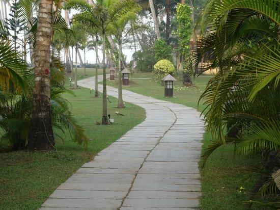 Carnoustie Ayurveda & Wellness Resort: pathway to beach