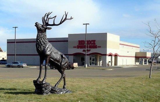 Montana's Rib and Chop House : Estatua ciervo Miles City