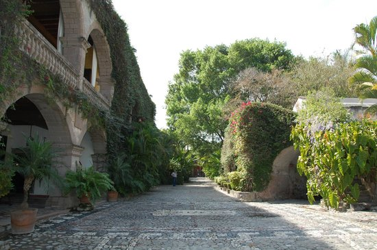 Hacienda San Gabriel de las Palmas : View 1