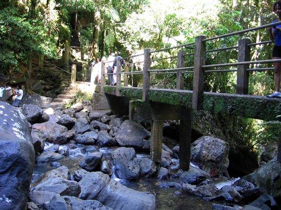 Big Tree Trail: The bridge over the river at La Mina Falls