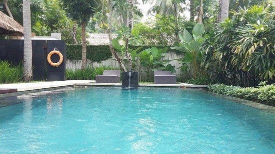 Kayumanis Jimbaran Private Estate & Spa : Huge pool