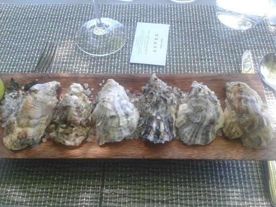 Delaire Graff Restaurant: Des huîtres à la texture et au goût incroyables...