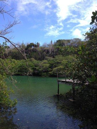 Hotel Fiesta: Lagoon near the hotel