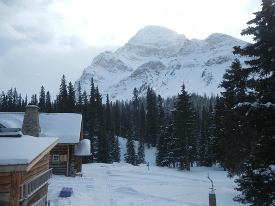 Skoki Lodge : View when walking from the outhouse.