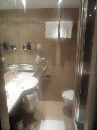 Austria Trend Hotel Ananas: First bathroom w/standing shower, no tub.