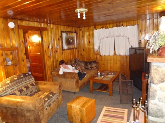 Daven Haven Lodge & Cabins : living room area