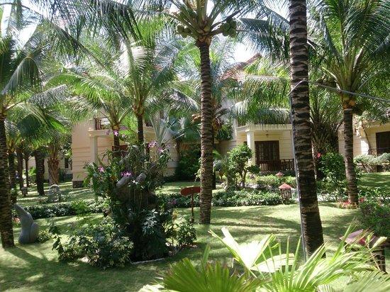 Sunny Beach Resort: Территория, бунгало