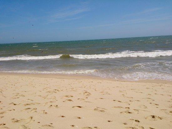 Sunny Beach Resort : Очень теплое море, это пляж