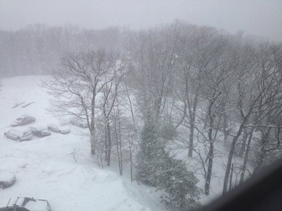 Pocono Manor Resort & Spa: Snowy but pretty view from our window!
