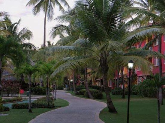 Caribe Club Princess Beach Resort & Spa : Camino peatonal