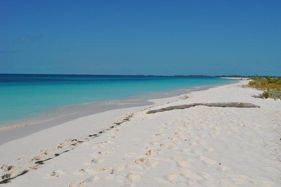 Playa Paraiso : Spiaggia