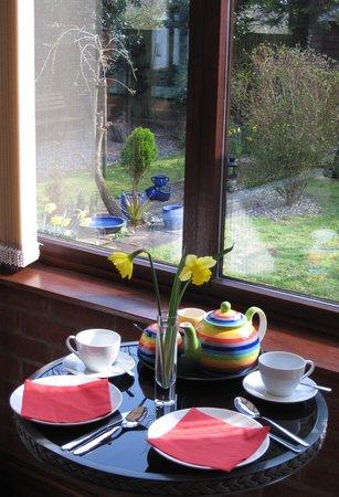 Mole Lodge Bed & Breakfast: Conservatory/breakfast room