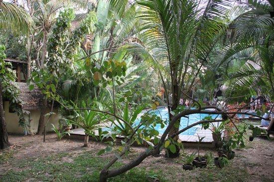 Mysteres d'Angkor Siem Reap Lodge: Piscine