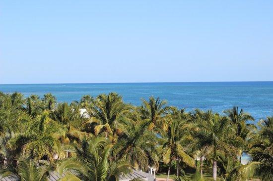 Grand Lucayan, Bahamas : Paradise