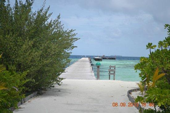 Fun Island Resort: island walking area