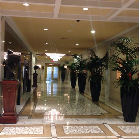 Miami Beach Resort and Spa: Lobby