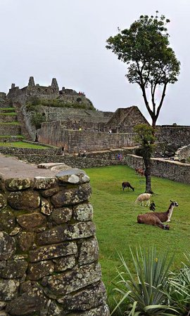 Inca Trail Reservations - Day Tours: getlstd_property_photo