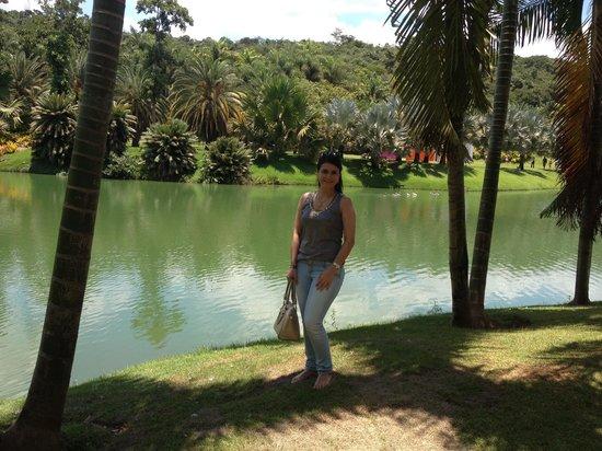 Inhotim : Lago
